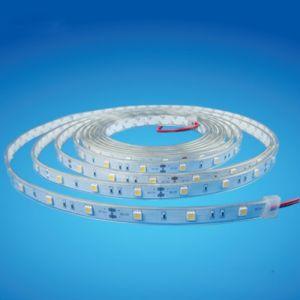 IP68 Waterproof SMD5050 White LED Tape Light