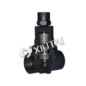 Bimetallic Steam Trap Valve (TB3-11) pictures & photos