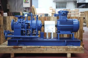 Multi-Stage Oil Centrifugal Pump pictures & photos