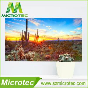 Multipurpose of HD Aluminum Photo Panel pictures & photos