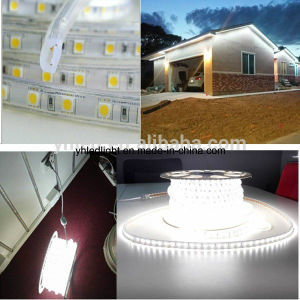 ETL 110V 220V 5050 LED Strip Light White Christmas Outdoor pictures & photos