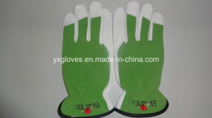 Sheep Leather Glove-Sheep Leather Glove-Working Glove-Safety Glove-Goatskin Glove pictures & photos