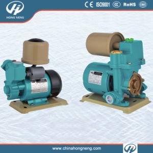 Self-Priming Peripheral Pump (TTY)