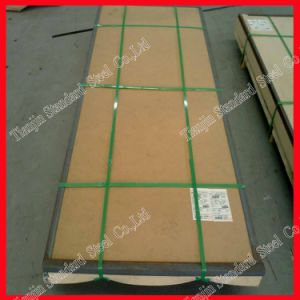 1.5mm 2.0mm 3.0mm Hr Ss Plate (304 304L 321 316) pictures & photos