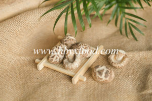 High Nutrition Vegetable Light Weight Dried Tea Flower Mushroom pictures & photos