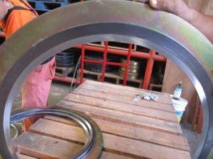 Spiral Wound Gasket pictures & photos