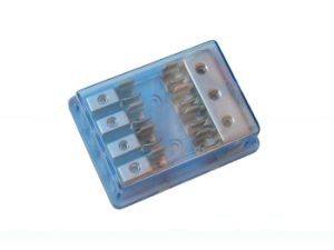 250V Glass Tube Fuse (5AG. L-141) pictures & photos