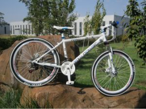 2016 New Design Good Quality Adult Mountain Bicycle pictures & photos