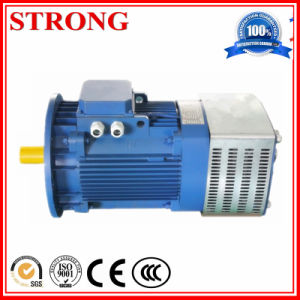 Construction Hoist Motor 11kw China Supplier pictures & photos