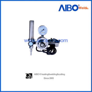 Industrial CO2 Flowmeter Regulator with Heater (2W16-1024) pictures & photos