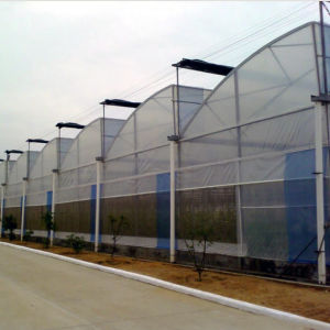 Large Advanced Plastic Multi-Span Film Covered Greenhouse pictures & photos