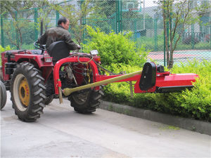 Europe Market Tractor 3 Point Mounted Pto Verge Flail Mower pictures & photos