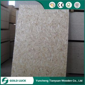 OSB Oriented Strand Board (QDGL140917) pictures & photos