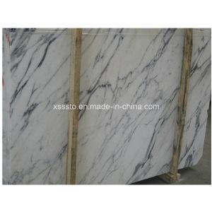 White Arabescato Vagli Marble Tiles pictures & photos