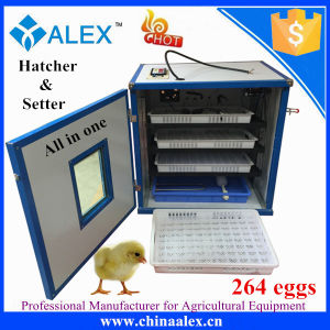 High Hatching Rate 264 Egg Incubator for Sale