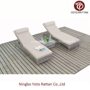 Two PCS Loungers for Outdoor with Teatable (016) pictures & photos
