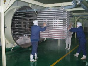 Vacuum Dryer for Fruit and Vegetable pictures & photos