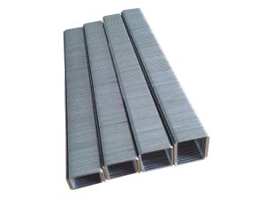 80 Series Fine Wire Staple pictures & photos