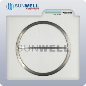 Good Quality Spiral Wound Gasket for Heat Exchangers pictures & photos