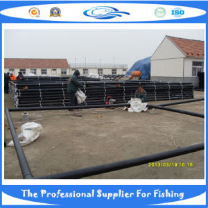 Square Fish Cage (SDC17907) pictures & photos