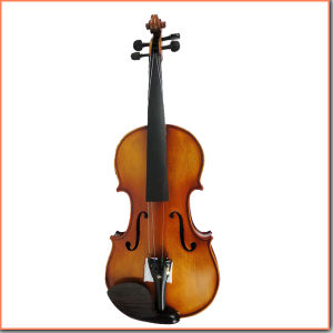 Quality Handmade Professional Violin pictures & photos