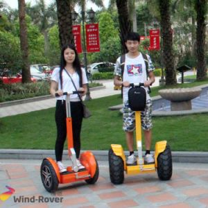 Two Wheel Standing Scooter Chinese Electric Car pictures & photos