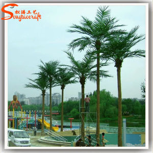 School Landscaping Evergreen Artificial Coconut Palm Tree pictures & photos
