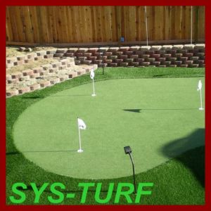 PE Curly Yarn Artificial Grass for Golf Putting Green pictures & photos