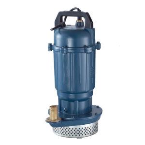 QDX, QX Electric Submersiblr Pump pictures & photos
