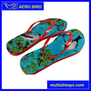 Colorfu Strap African PE Slippers for Ladies (BF15002-Red) pictures & photos