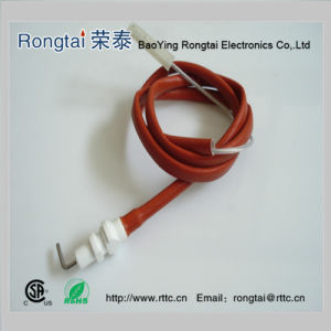 Ignition Electrode for Gas Oven (mabe) pictures & photos