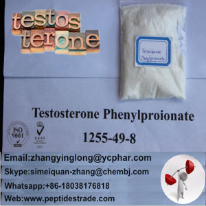 99%Raw Steroids Powder Well-Tolerated Anabolic Testosterone Phenylpropionate pictures & photos