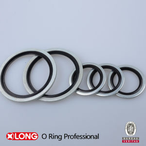 NBR/FKM/Viton/Silicone/HNBR/EPDM Material Rubber Seal pictures & photos