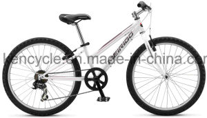 Hot Selling Mountain Bike/MTB Bike/Mountain Bike Bicycles/MTB Bicycles/Atb Bike/CTB Bike pictures & photos
