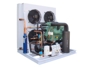 Air Cooled Condensing Unit with CE Certification pictures & photos