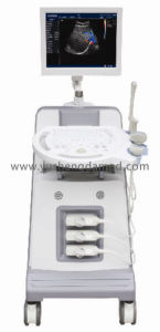 Full Digital 4D Color Doppler Ultrasound Machine CE Approved Ysd690 pictures & photos