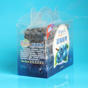 Factory Wholesale Custom Printing Plastic Fruit Packing Box (Vegetable bag) pictures & photos