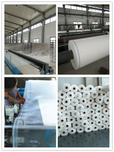 100% Virgin HDPE Knitted Anti Hail Net pictures & photos