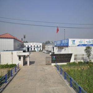 Jam Center Pet Food Process Line (LT80) pictures & photos