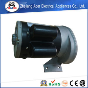 Low Power AC Single Phase Two Speed Electric Motor pictures & photos