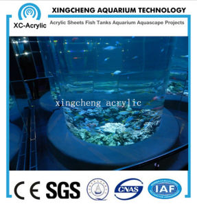 Customized Transaprent Acrylic Fish Tank of Oceanarium Project pictures & photos