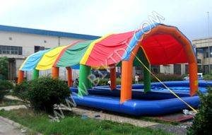 Giant Inflatable Swimming Pool, Inflatable Pool with Poolcover D2022 pictures & photos