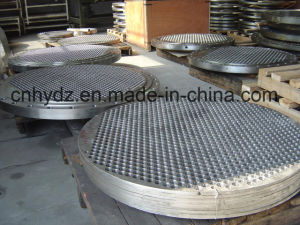 Hot Forged Stainless Steel Tube Sheet of Material F304L pictures & photos