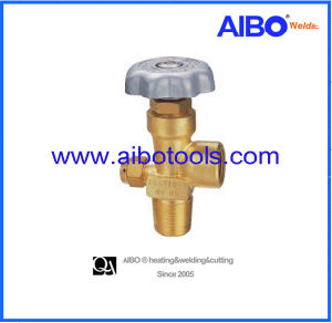 Brass Cylinder for Inert Gases Cylinder-Cga580 pictures & photos