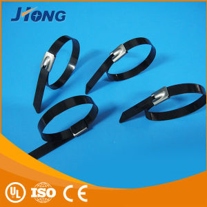 Stainless Steel Cable Tie (with PVC/Epoxy) pictures & photos