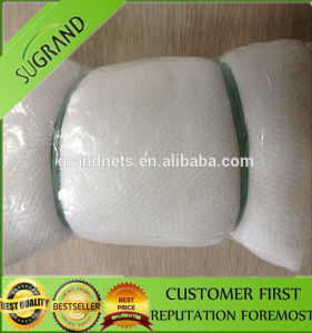 New UV Stabilized Anti Bird Netting pictures & photos
