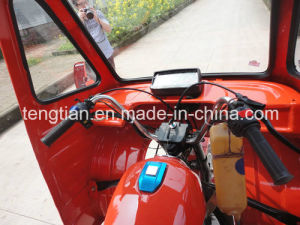 Passenger Rickshaw pictures & photos
