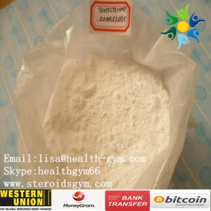 Raw Steroid Testosterone Enanthate Test Enanthate for Bodybuilding