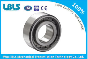 SKF Y- Bearings /Insert Bearings Yar206-2f pictures & photos