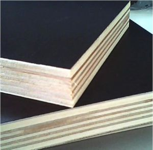 Film Faced Poplar/Birch Combi Plywood pictures & photos